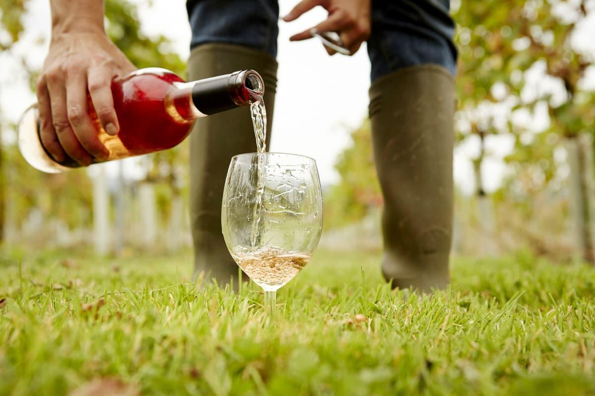Viiniä kaadetaan lasiin.