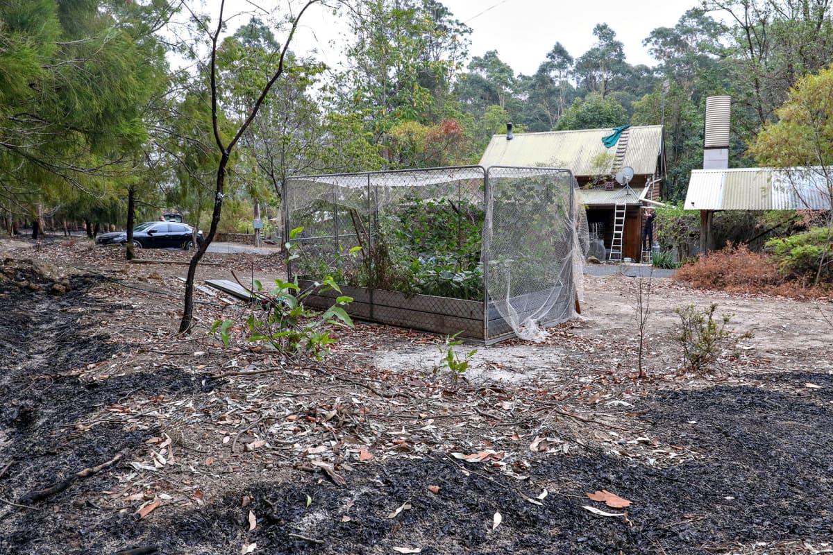 Metsäpalon jäljet pihapiirin puutarhassa.