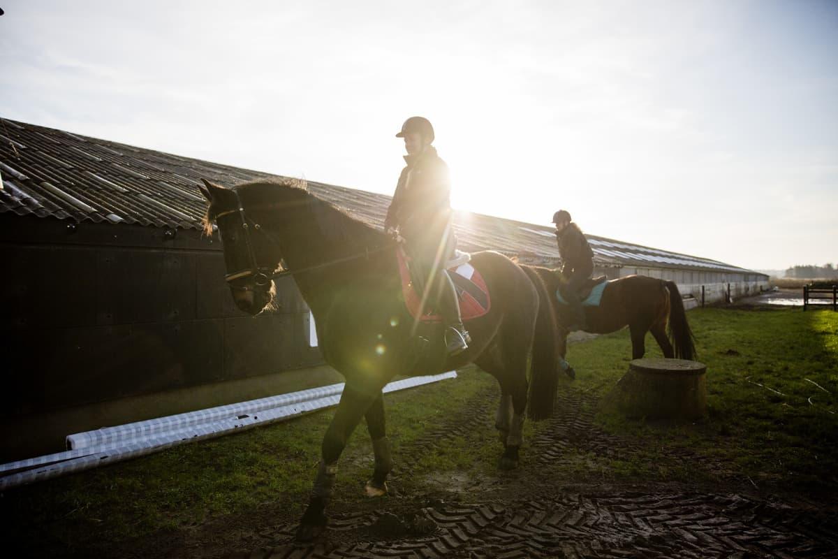 kaksi ratsastajaa ja hevonen vastavalossa