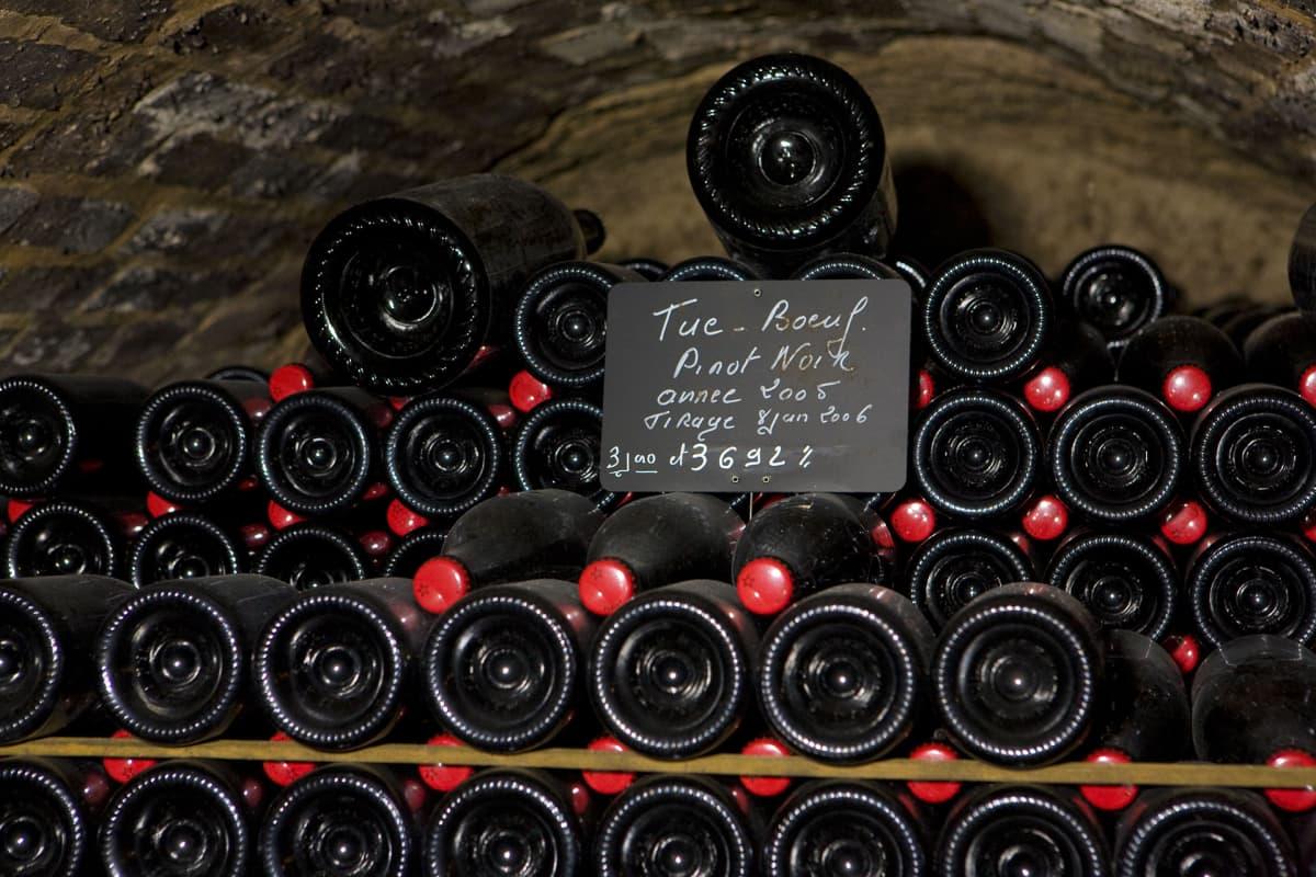 Janisson Baradon viinitila  Ranskassa.