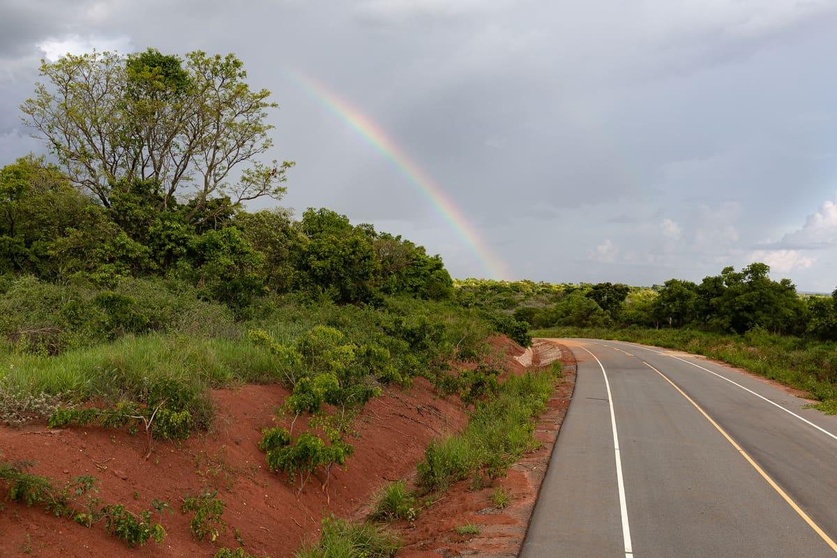Uganda odottaa saavansa öljyputken ansioista valtavasti verorahoja kassaan, mutta turismitulot uhkaavat tyrehtyä jos kansallispuistoja tuhotaan.