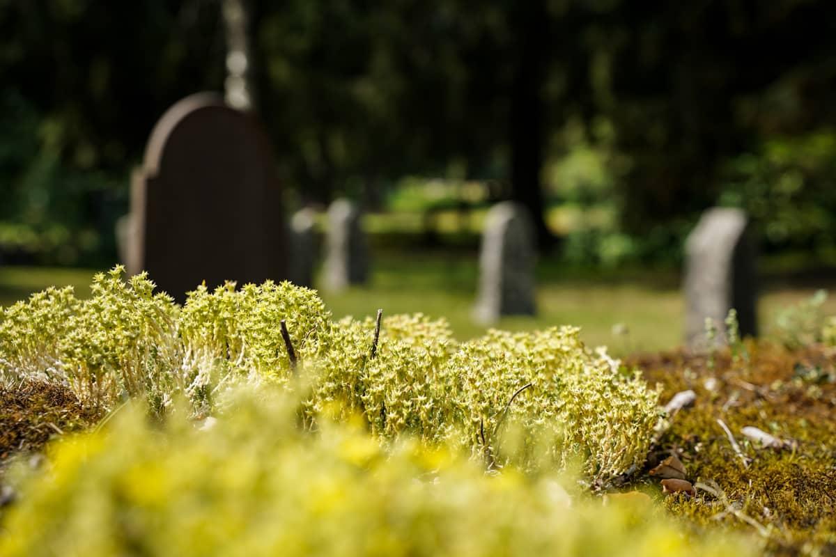 hautausmaa, Mikkeli
