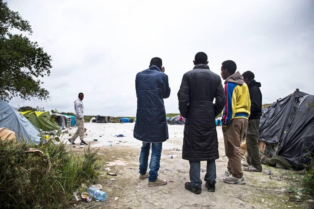 Eritreasta paenneiden pystyttämä leiri Calais`ssa, Pohjois-Ranskan rannikolla, elokuussa 2014. Pakolaiset pyrkivät Iso-Britanniaan Ranskan läpi kulkevien rekkojen kyydissä.