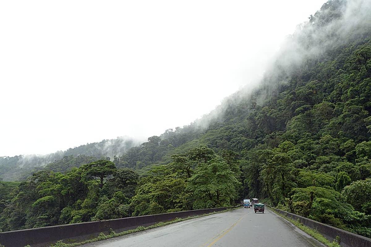 Costa Rican sademetsää.