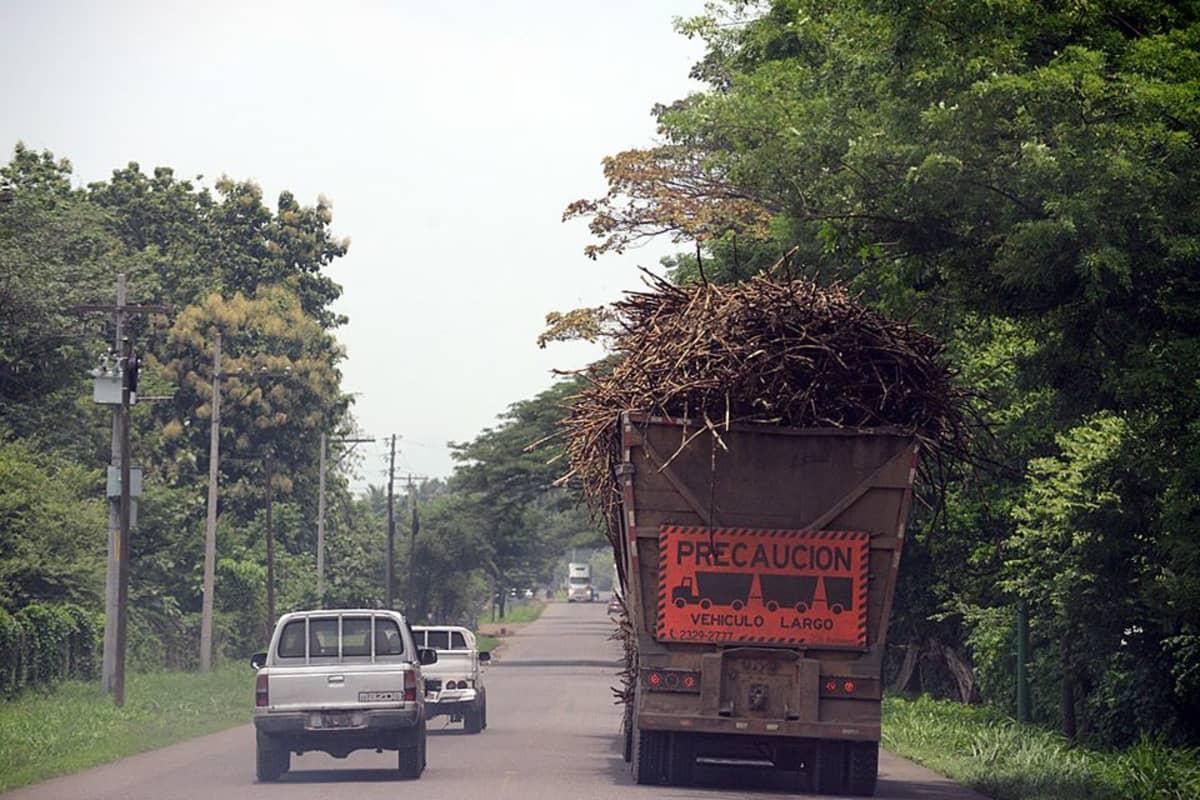 Rekka kuljettaa sokeriruokoa Guatemalassa.