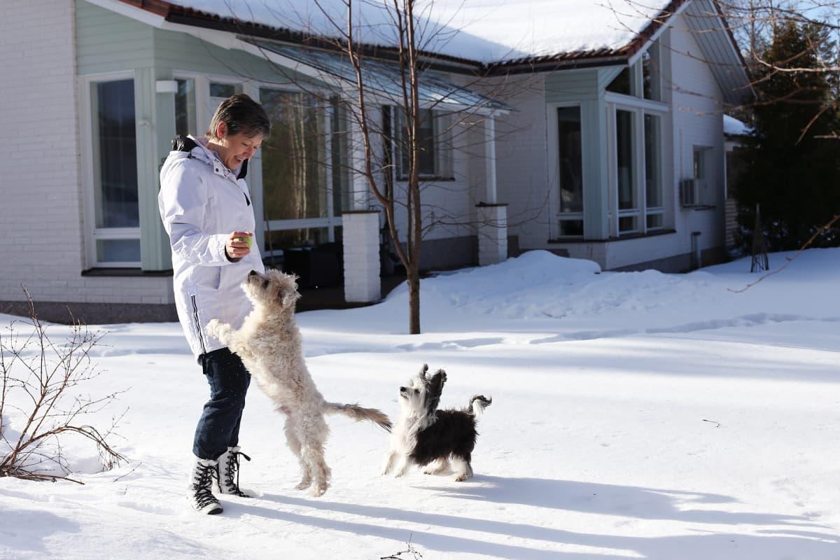 nainen koirien kanssa