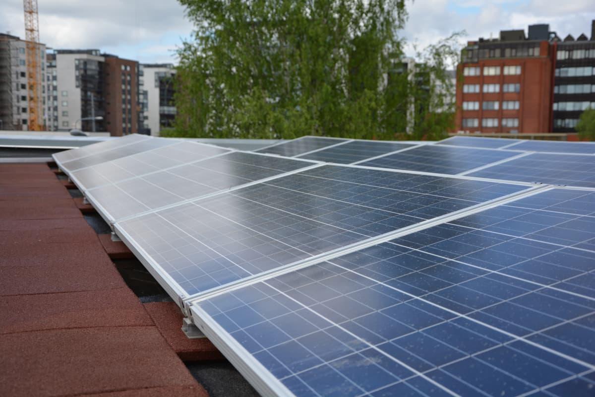 Turun ammattikorkekoulun uusi opetus- ja tutkimustarkoitukseen tehty testilaitos tuottaa tietoa siitä, mikä vaikutus on aurinkopaneelien suuntaamisella ja tuulella.