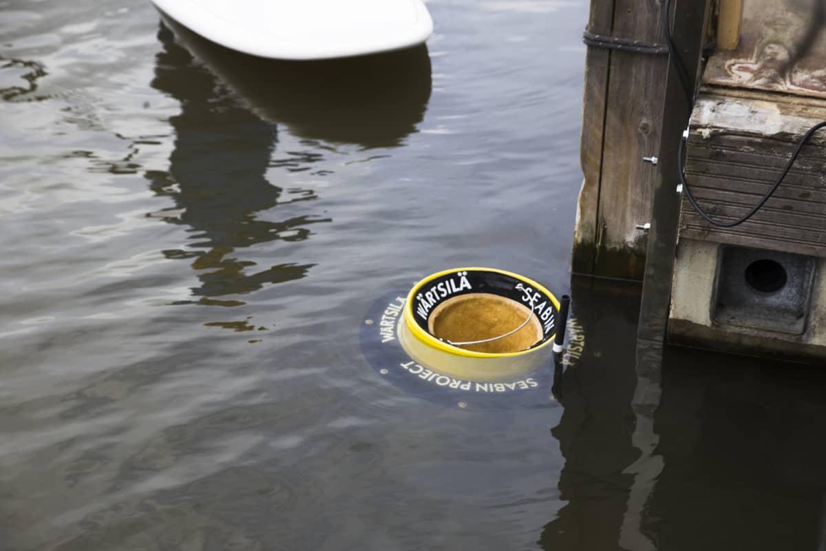 Meriroskis vedessä