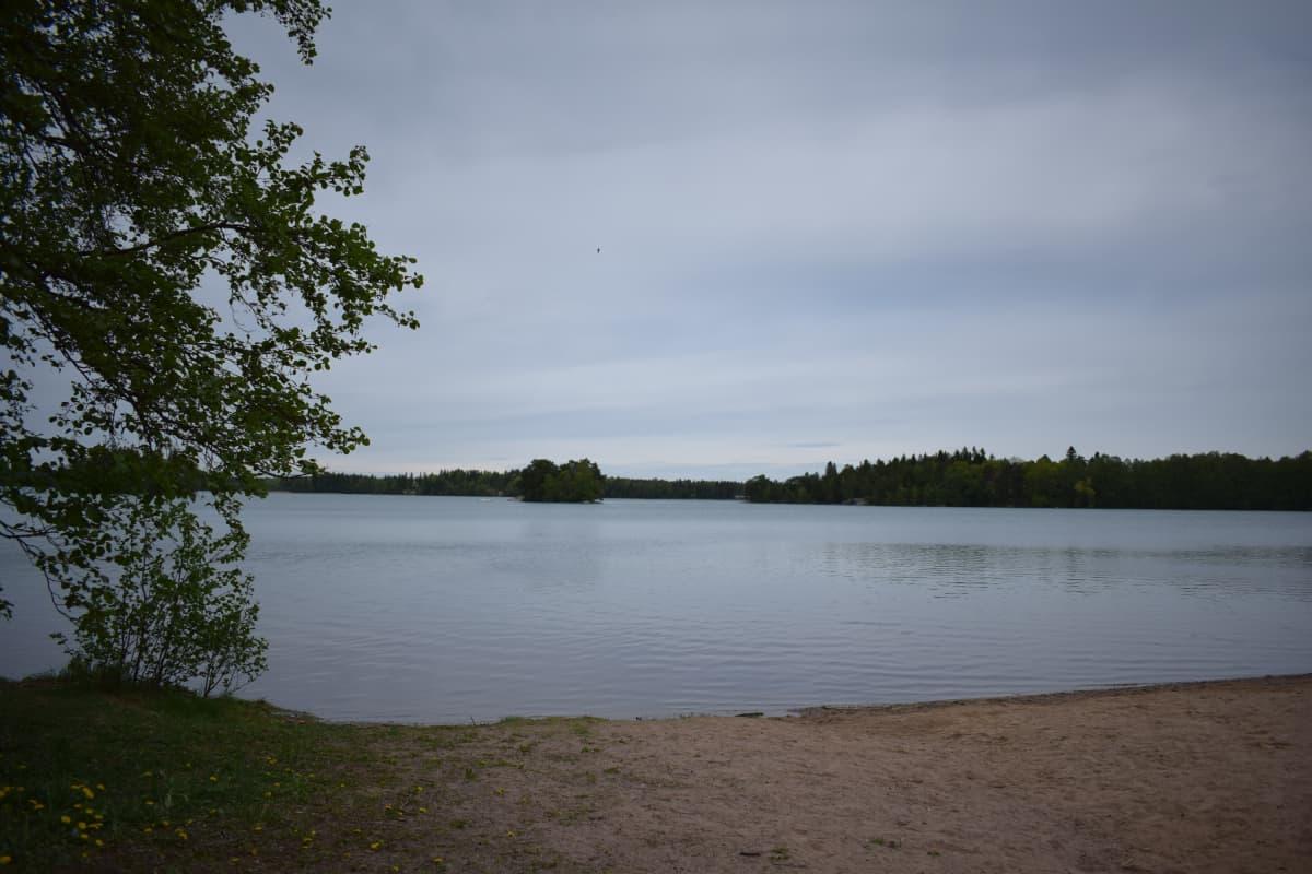 Littoisten järvi 30.5.2017 harmaalla säällä, kirkastuksen jälkeen.