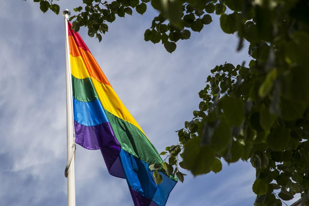 Pride-lippu Helsingin yliopiston edustalla