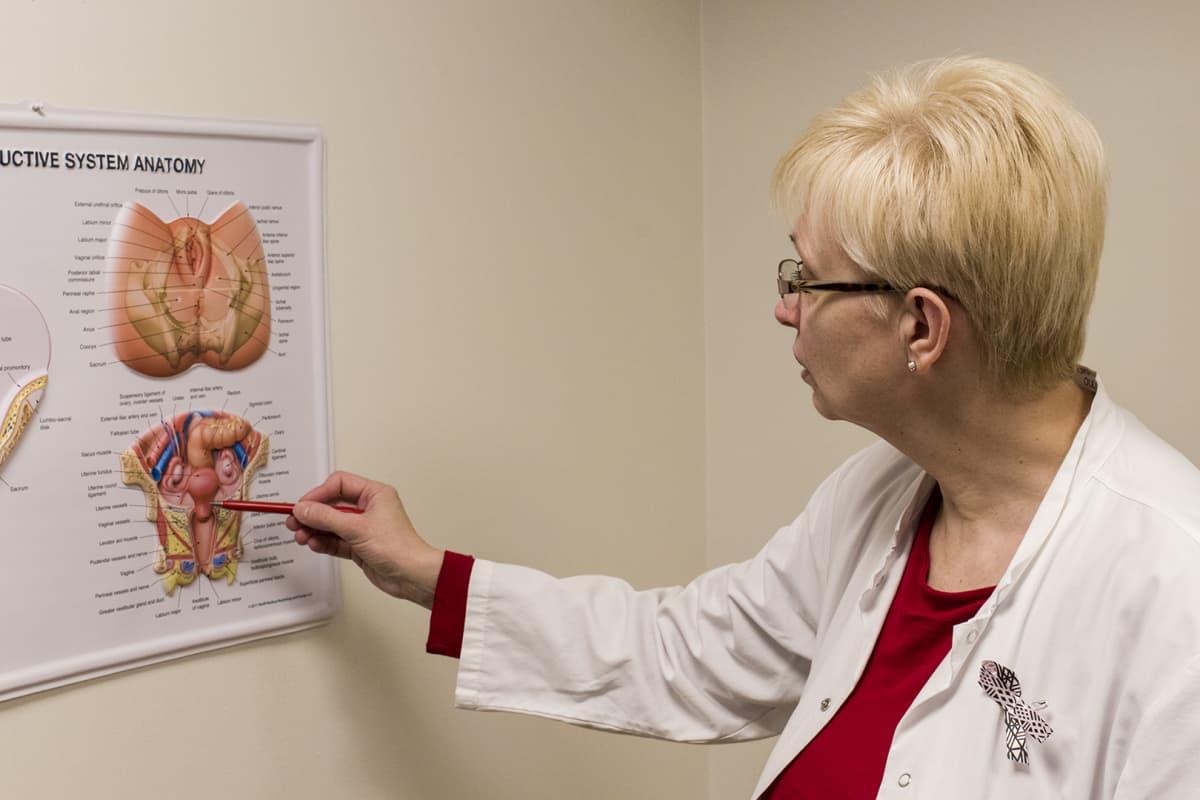 Naistentautien ja synnytysten erikoislääkäri Anne Talvensaari-Mattila esittelee taulultanaisen sukuelinten anatomiaa.