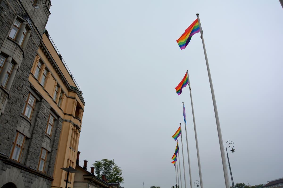 Sateenkaarilippuja Turussa Aurajoen rannalla Pride-viikon aikana.
