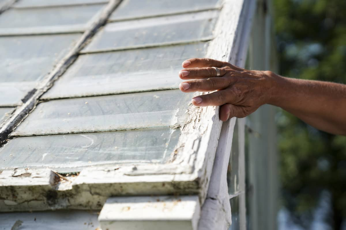 Tulevaisuuden tutkija Markku Wilenius silittää sukunsa saaristoasunnon 80-vuotiaan kasvihuoneen seinän rapisevaa maalipintaa kesällä 2019. Talveksi lasit viedään vajaan turvaan.