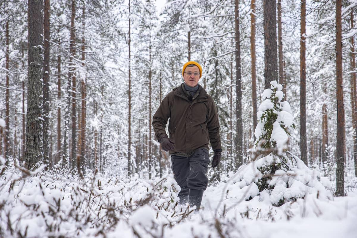 Kuvassa Juhani Pyykkönen, Metsäkeskuksen biotalouden johtava asiantuntija, suometsässä Paltamossa.