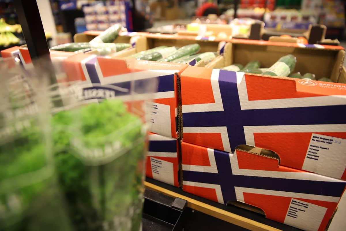 Norjalaisia yrttejä ja kasviksia