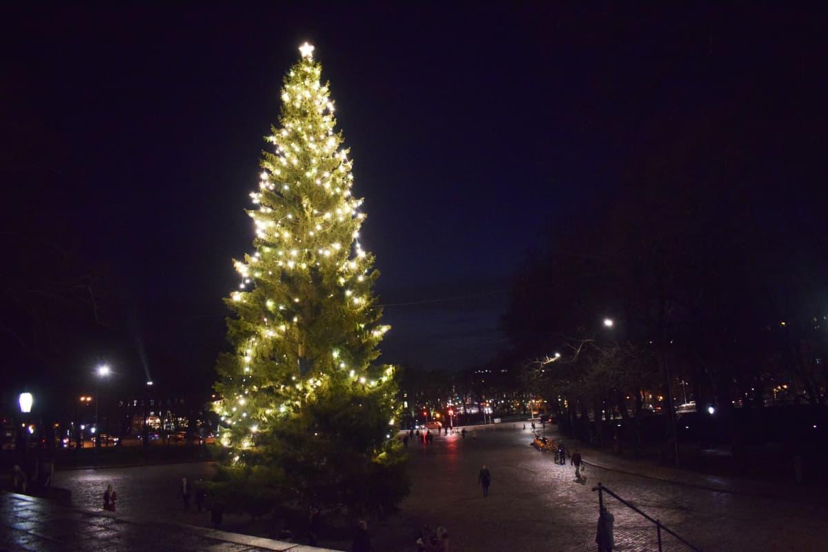 Turun tuomiokirkon joulukuusi kirkonpuolelta kuvattuna.