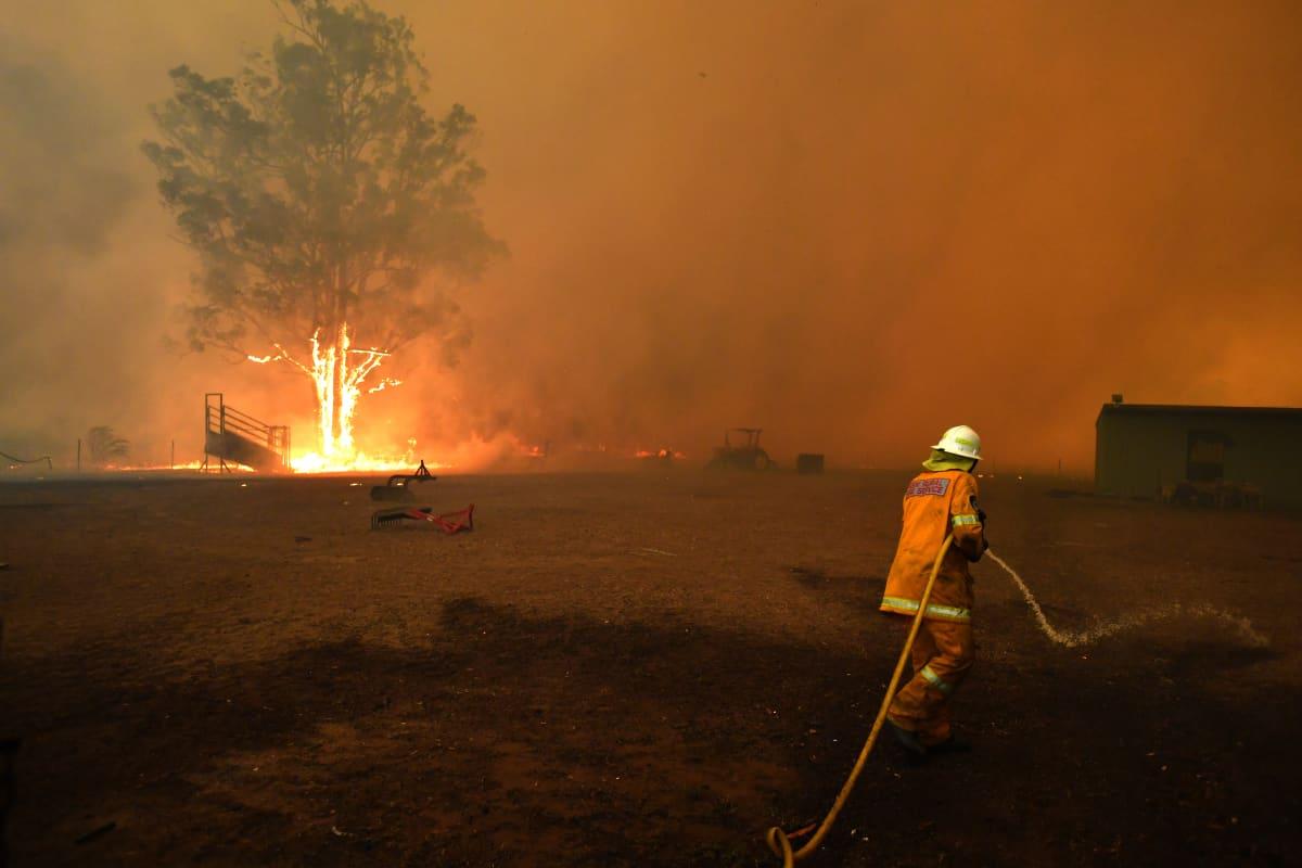 Palomies sammuttaa maastopaloa, puu palaa.