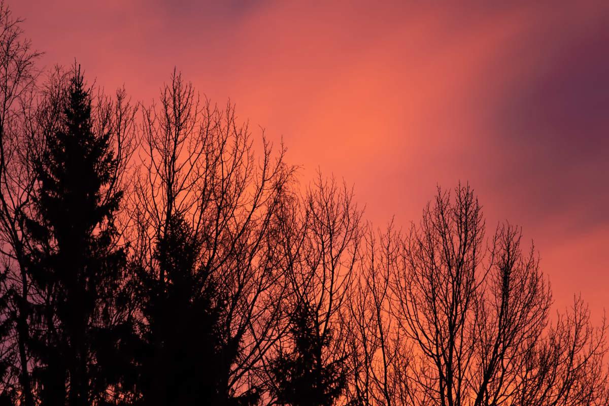 Auringonnousu Pietarsaaressa Pirkko Hautamäen kuvaamana 14.1.2020