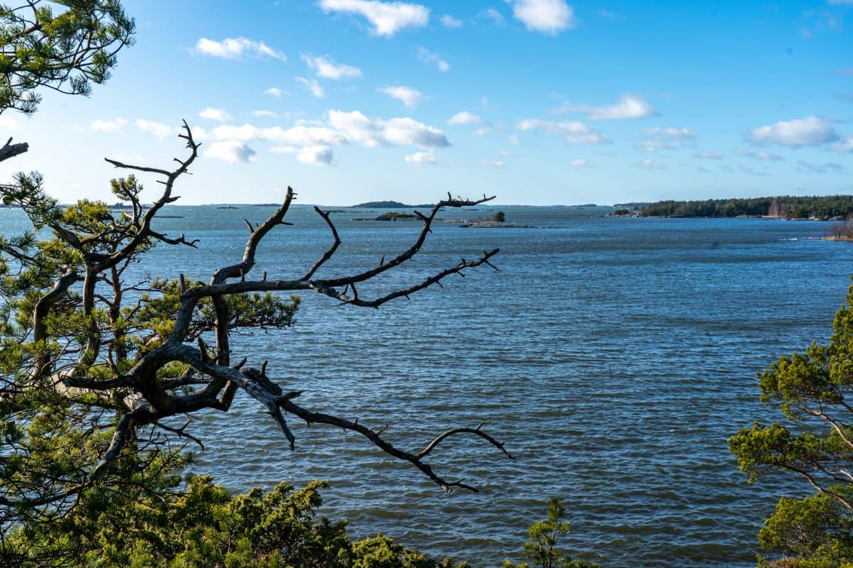 Näkymä Hangon Högholmenilta merelle.