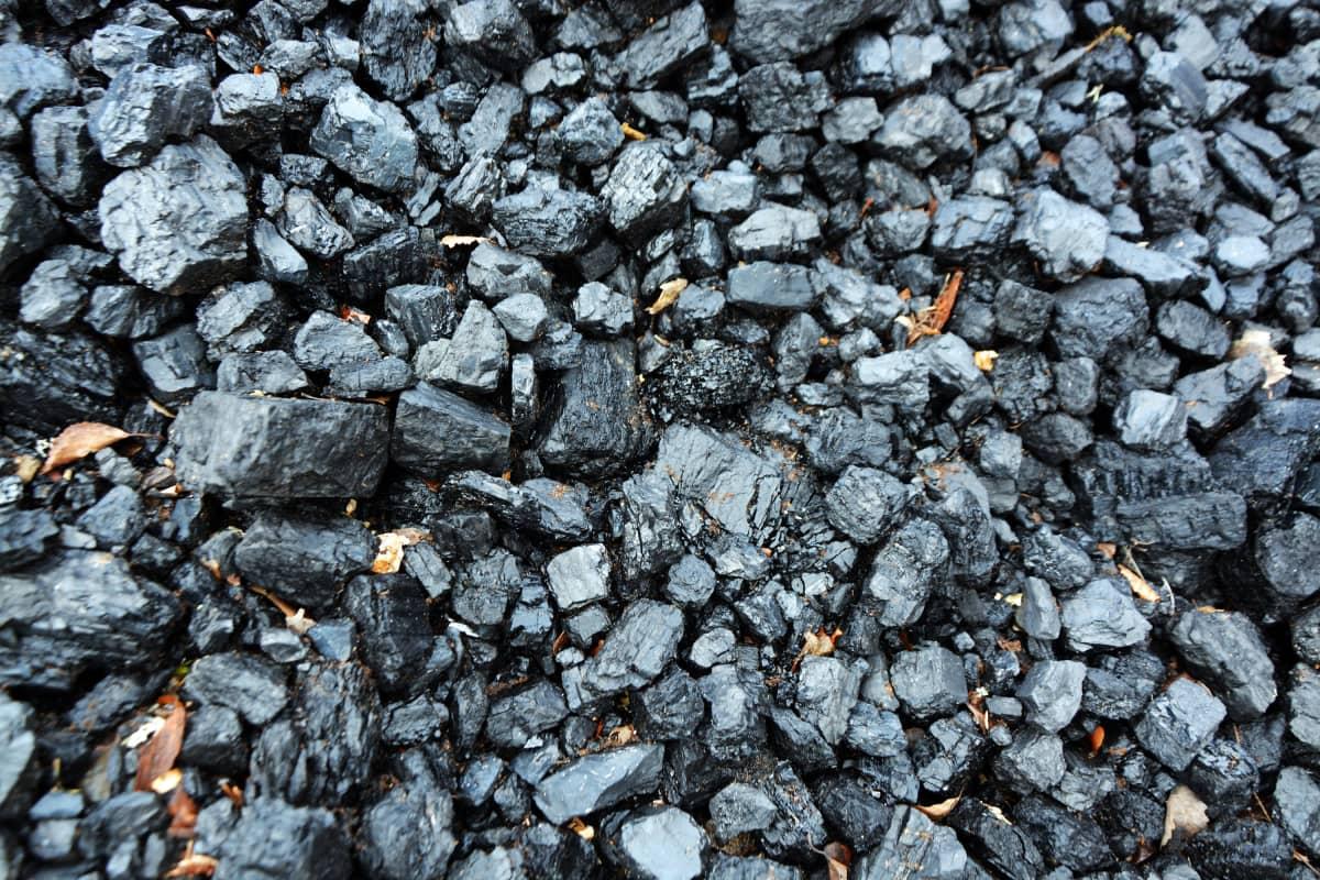 kivihiiltä lähikuvassa