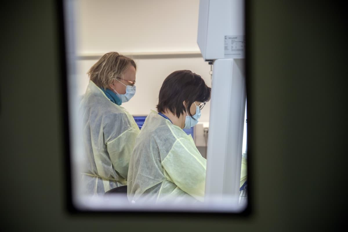 Sairaanhoitajat tekemässä koronavirus näytettä