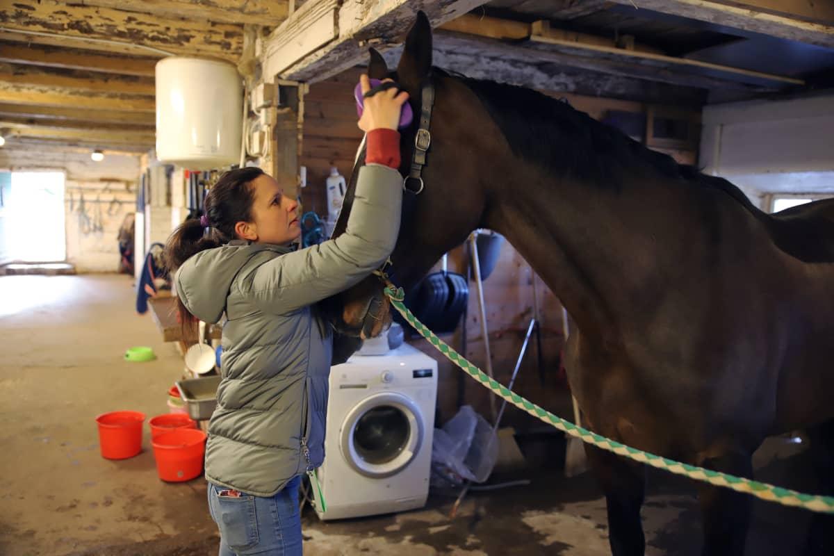 Olga Temonen ja Alma hevonen hevostallissa.