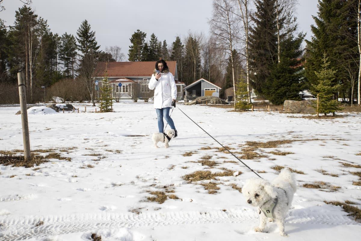 ANITA VÄLIMAA lenkittää koiria