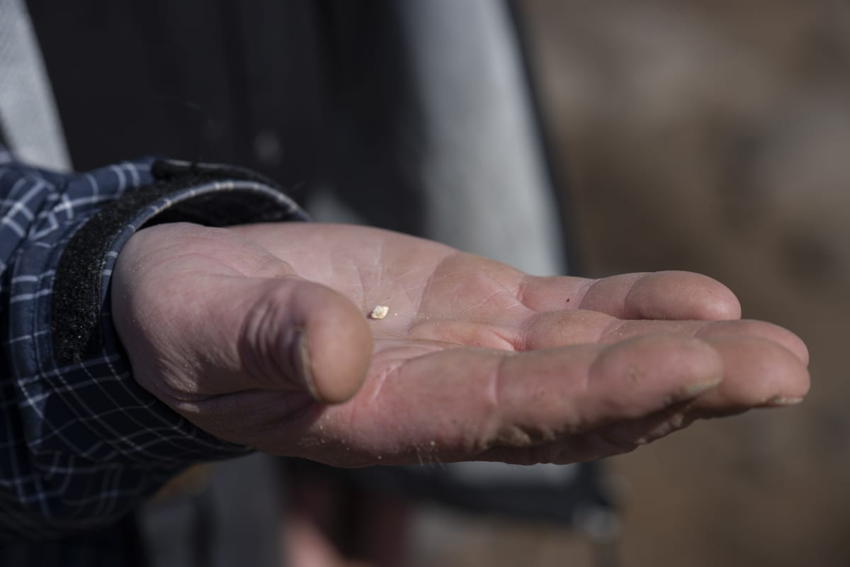 Muinainen luunpala Tapani Rostedtin kädessä.