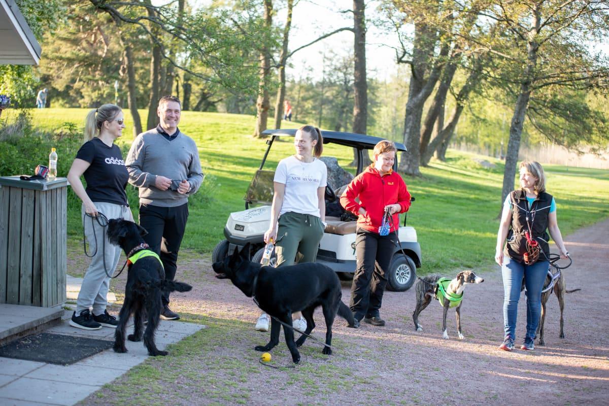 Koiria omistajineen golfkentällä Ruissalossa.