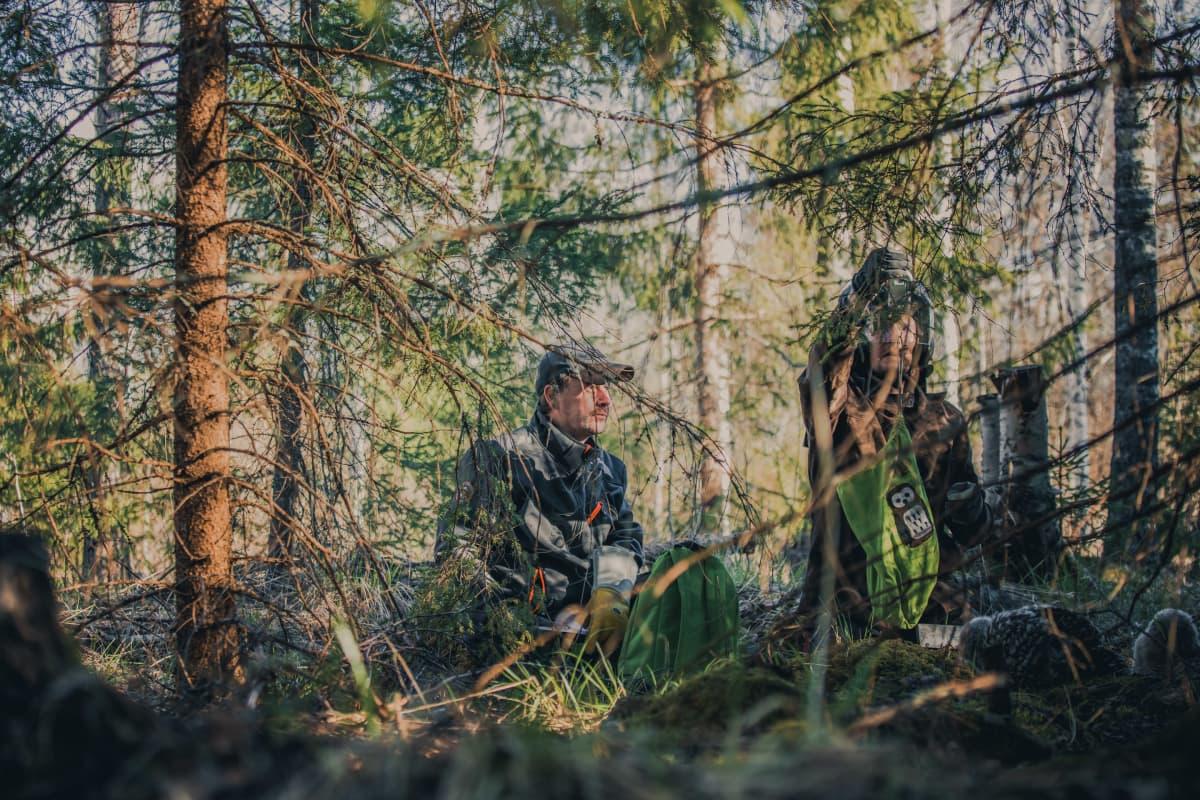 Aki Korhonen ja Vesa Virtanen rengastavat pöllöjä