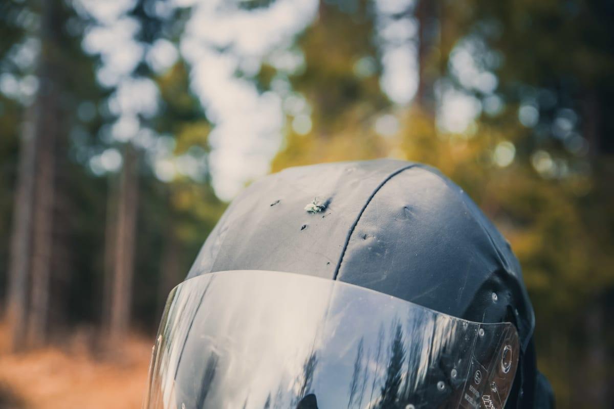 rengastajan kypärässä on kynsien jäljet