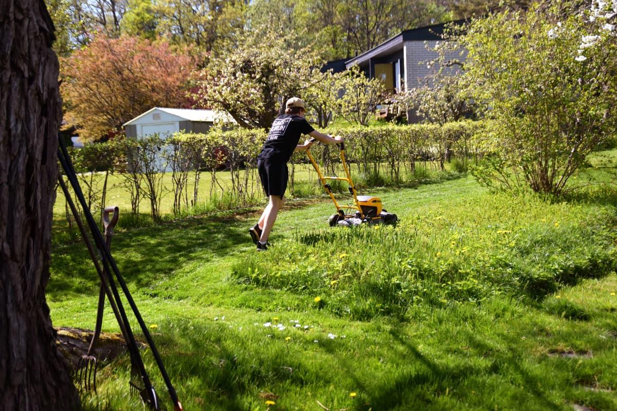 Nuori henkilö leikkaa nurmikkoa.