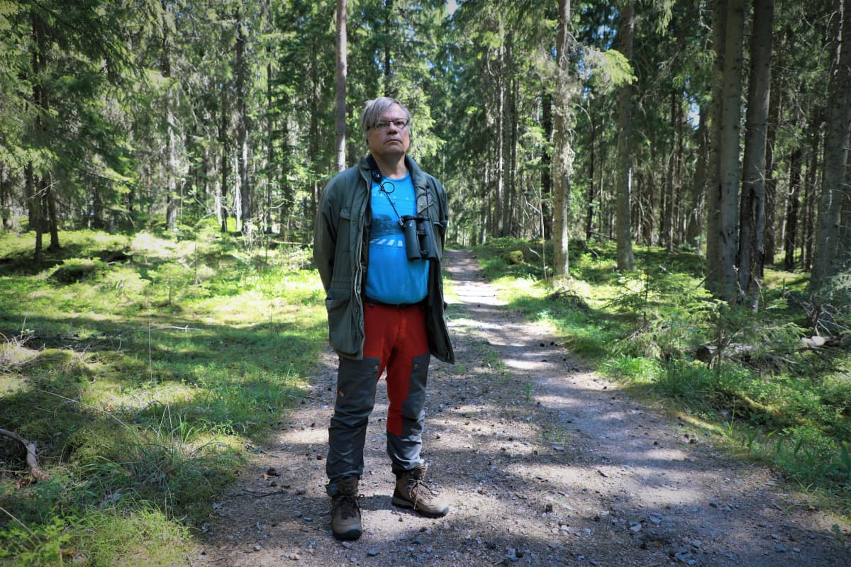 Matti Koivula, LUKE