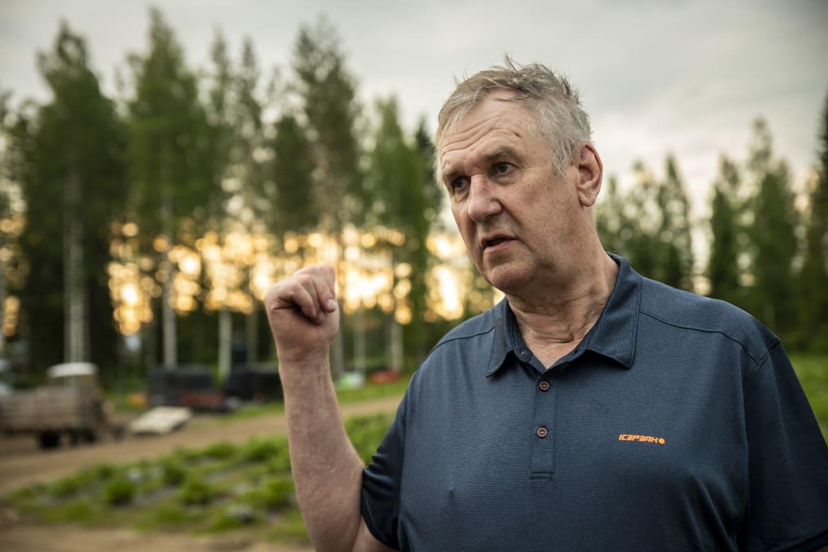 marjanviljelijä Veikko Raivio, Suonenjoki