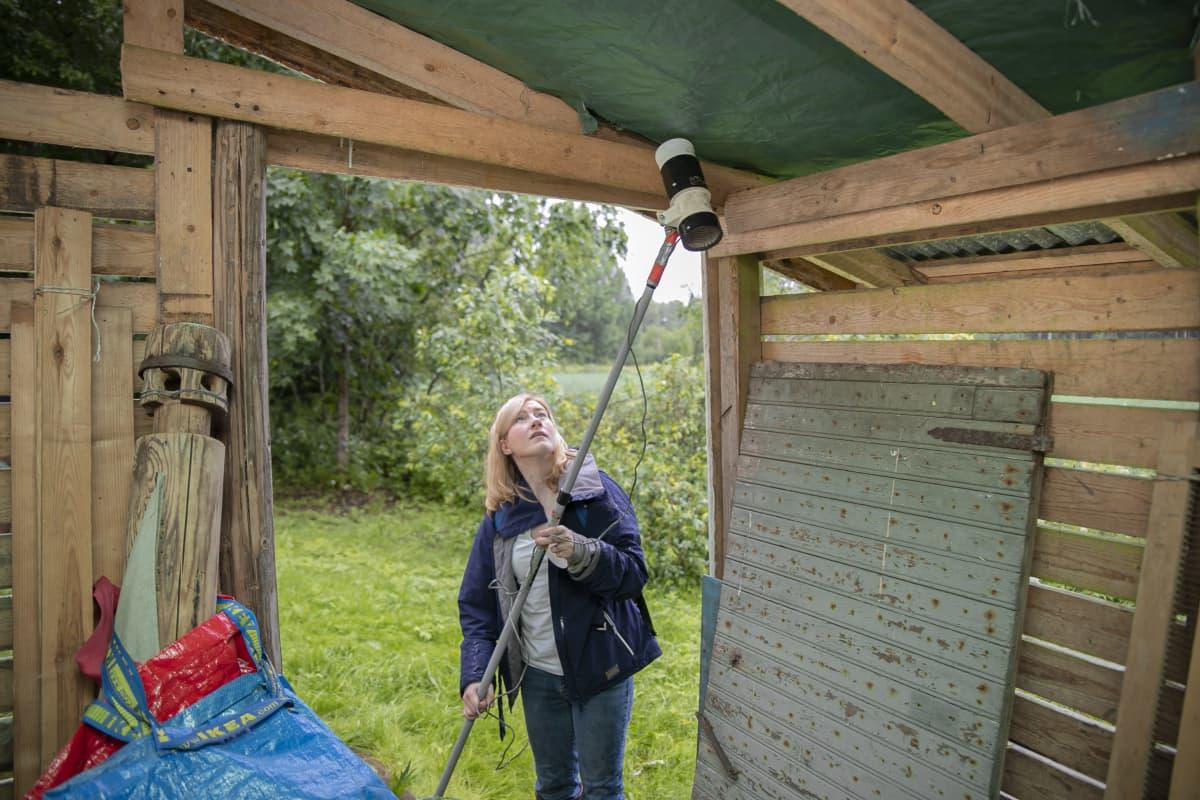 Lorna Culverwell pyydystää hyttysiä ansalaitteella kotipihansa vajasta Hattulassa.