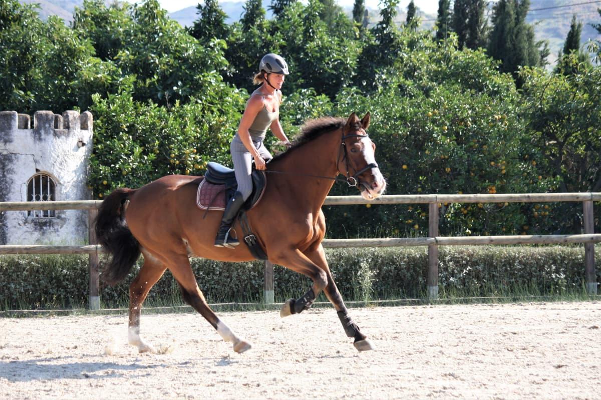 Melina Holmberg laukkaa hevosella ratsastuskentällä.