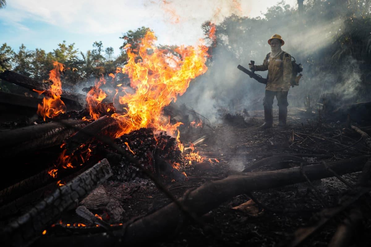 Tenharin alkuperäiskansan muodostama vapaaehtoispalokunta sammutti viime syyskuussa paloa Humaitassa, Amazonin alueella.