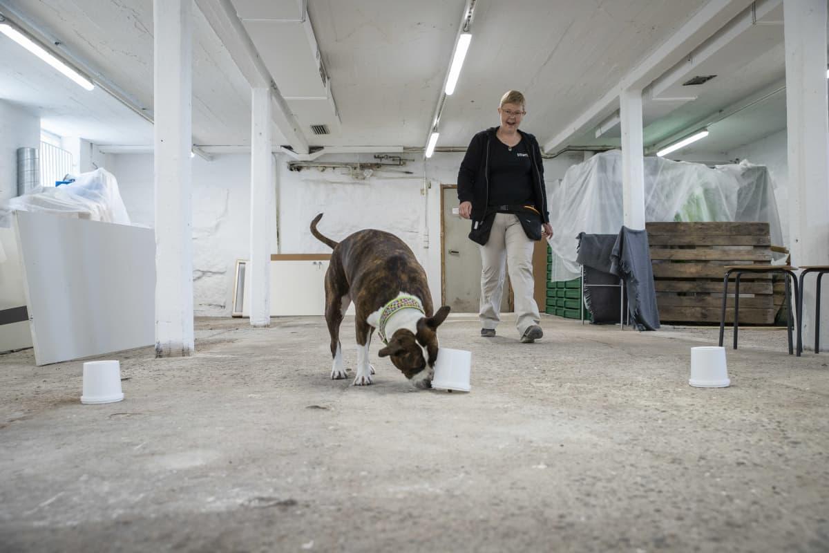 """Liisa Tikka, eläinkouluttaja yhdessä koiransa """"Nastan"""" kanssa."""
