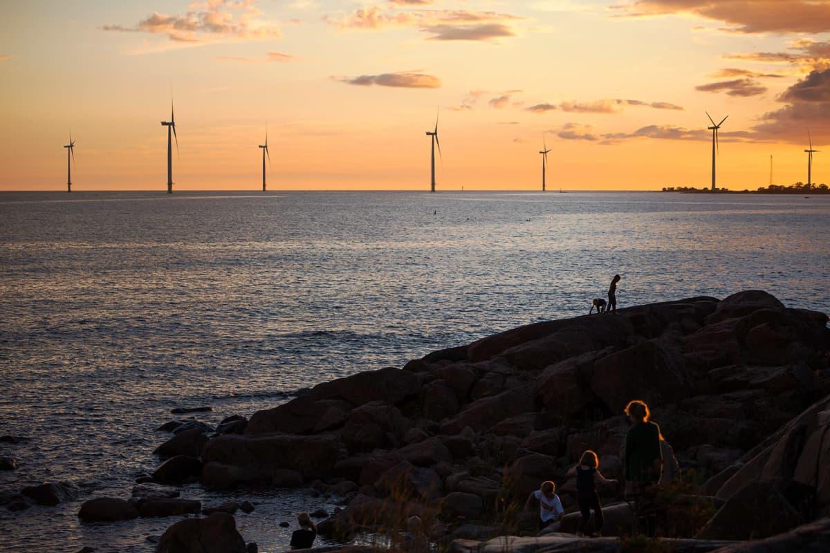 Tahkoluodon edustalla Porissa merimaisemaa hallitsee yhteensä 11 tuulimyllyn merituulipuisto.