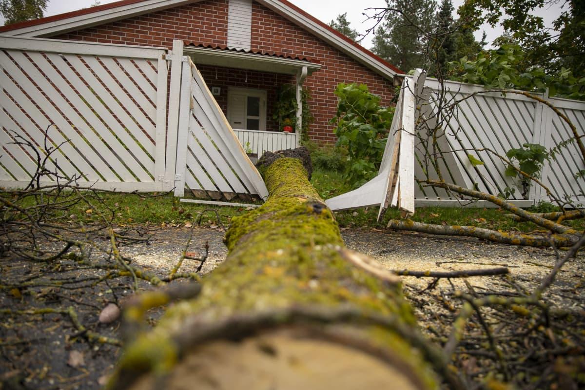 Kaatunut puu on rikkonut aidan