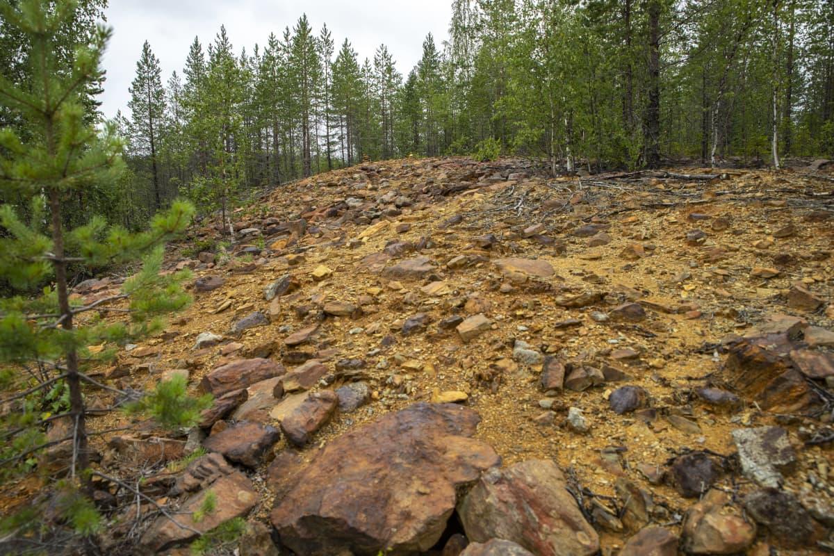 Kangasjärven kaivoksen kaivannaisjätealue.