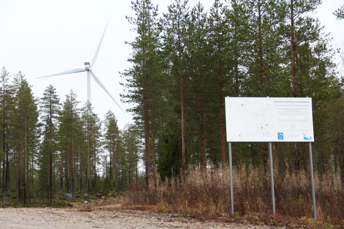 Louen tuulipuisto Tervolassa