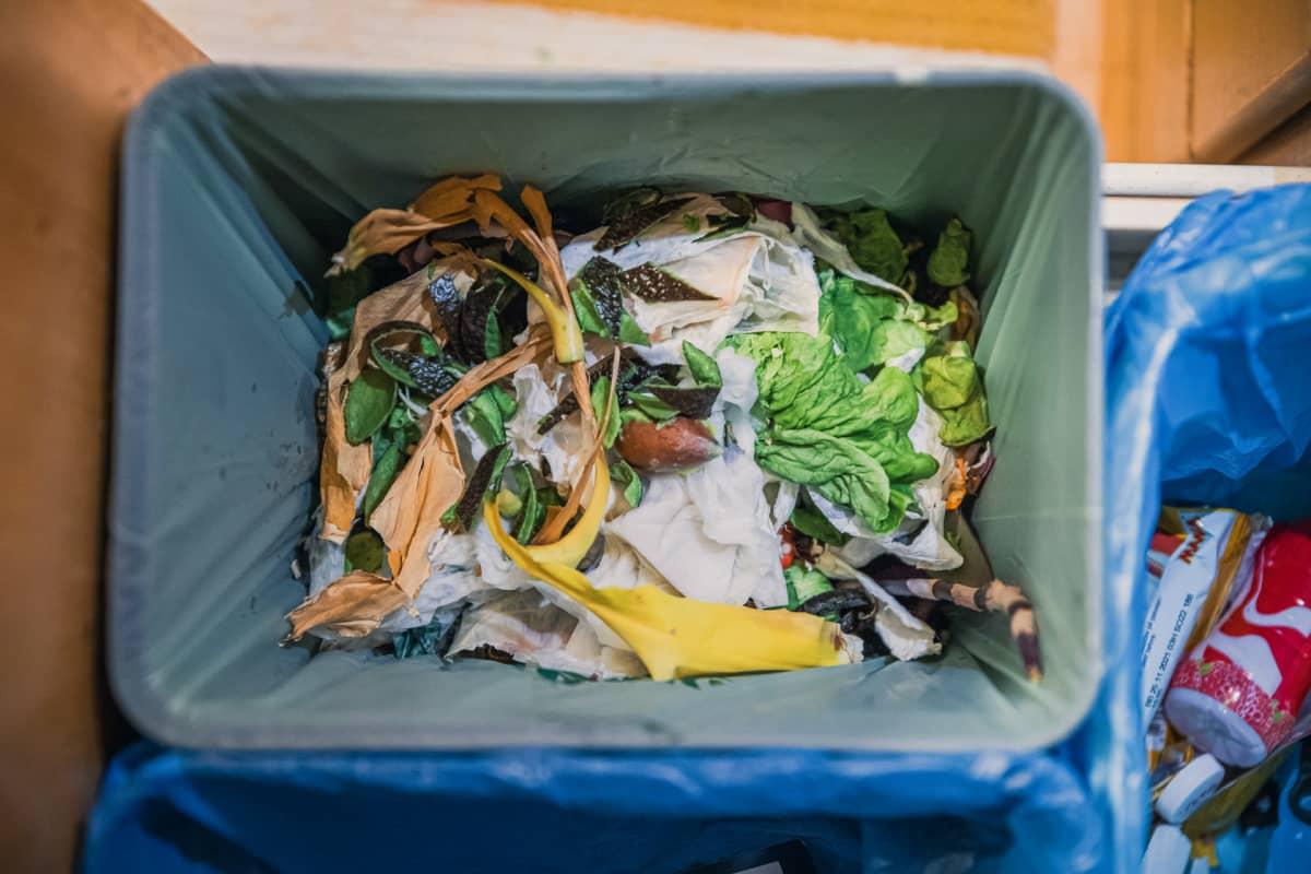 Biojätettä omakotitalon roskiksessa.