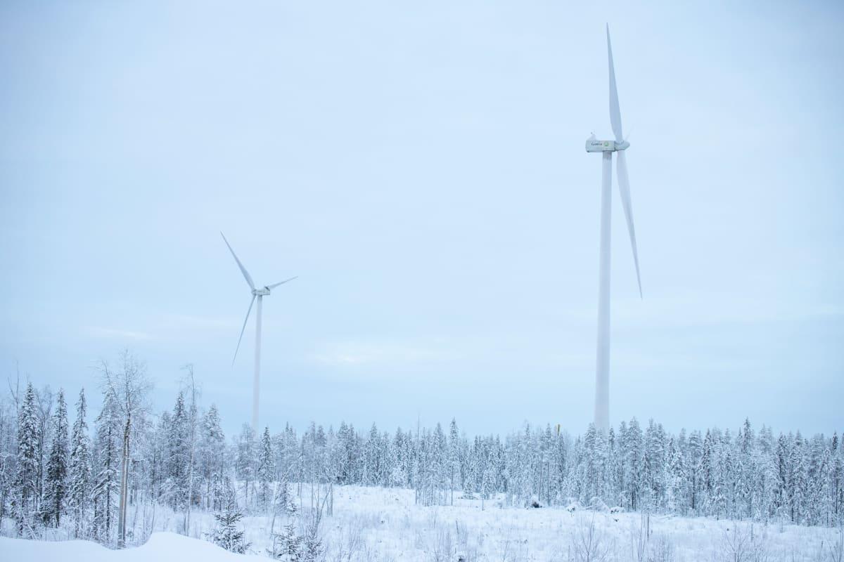 Tuulivoimalat Tornion Kitkiäisvaaran tuulipuistossa talven keskellä.