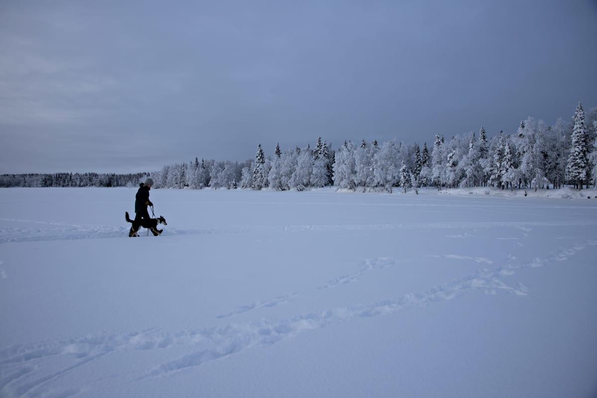 Vähälumisella Ylläsjärven jäällä on helppo käydä kävelyllä.