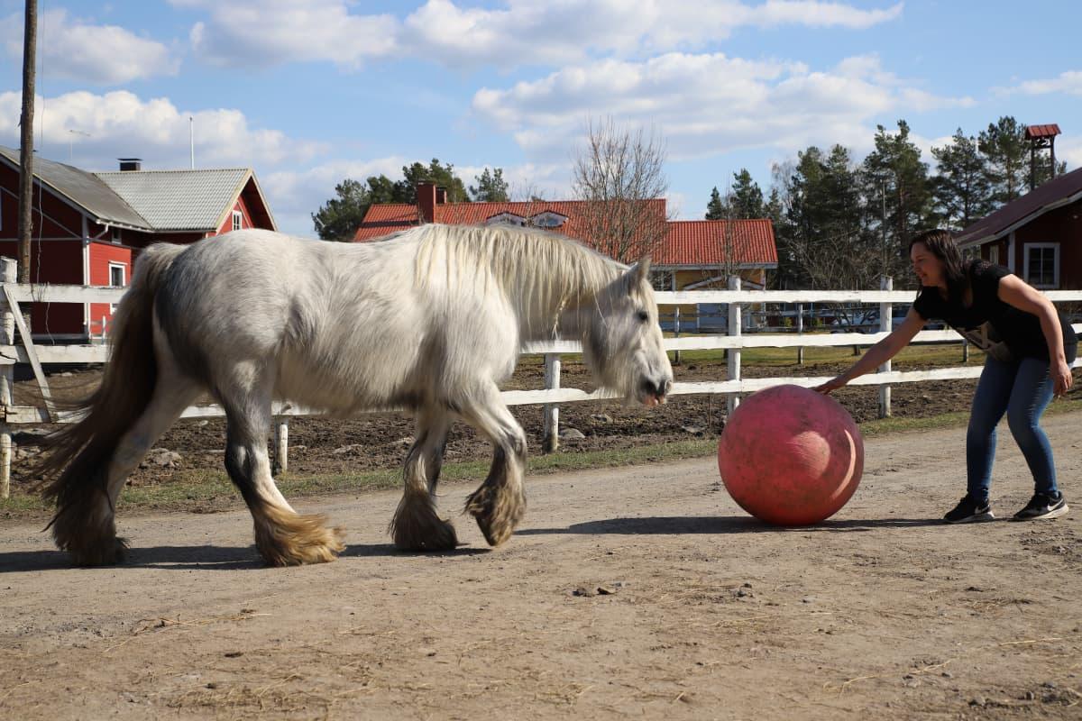 Rita Peltola ja Emma-hevonen