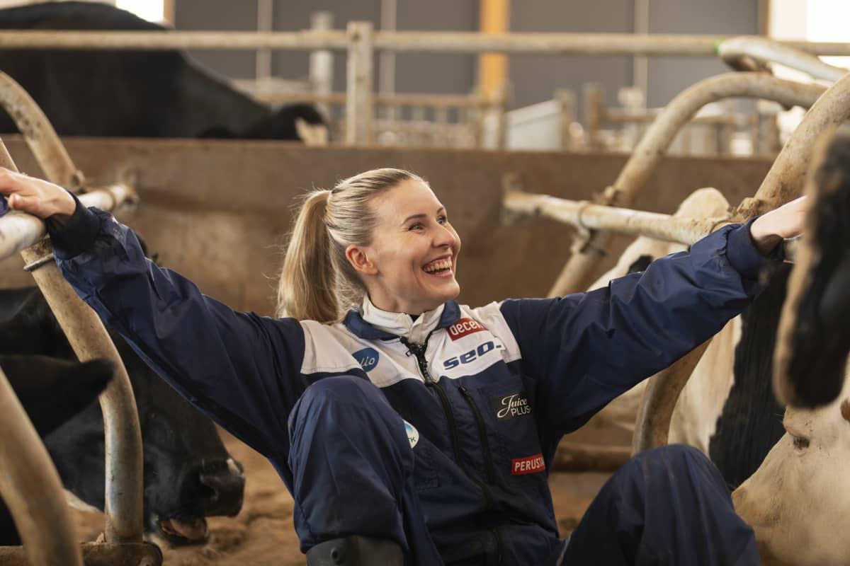 Kristiina Mäkelä skrattar då hon sitter bland korna.