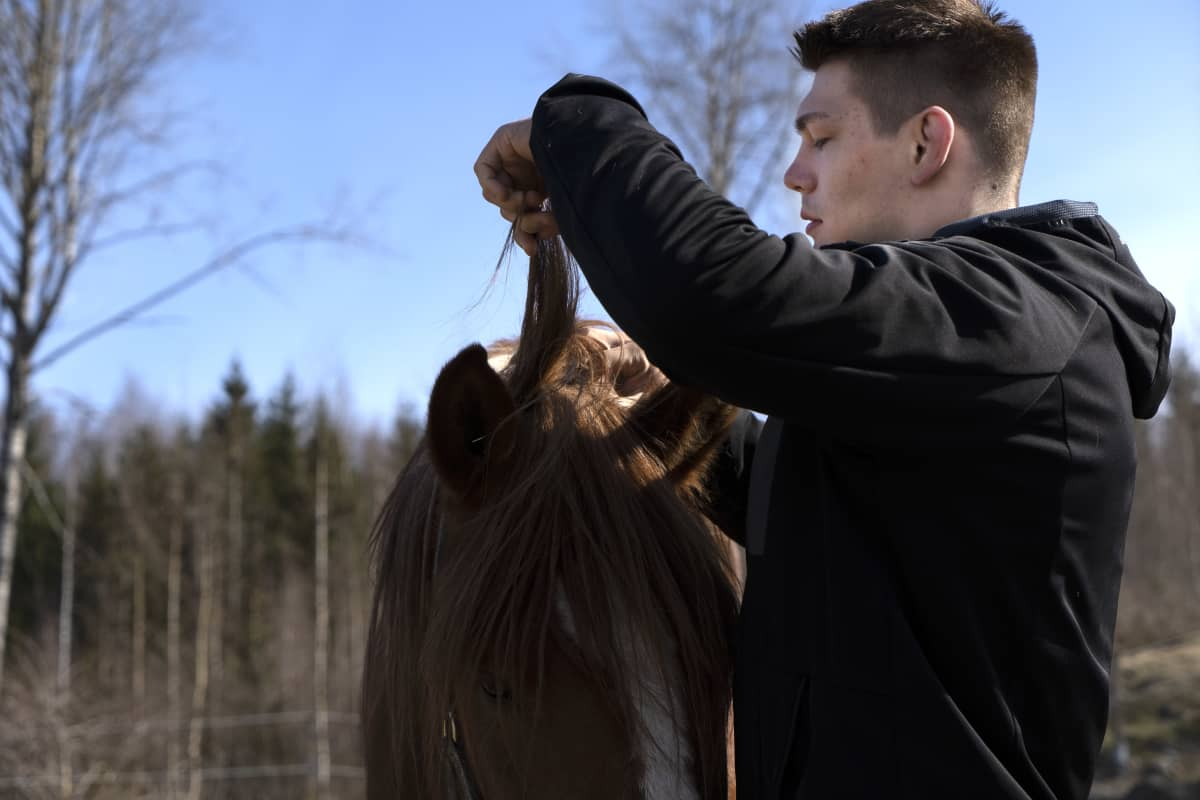 Arvi Savolainen ja hevonen