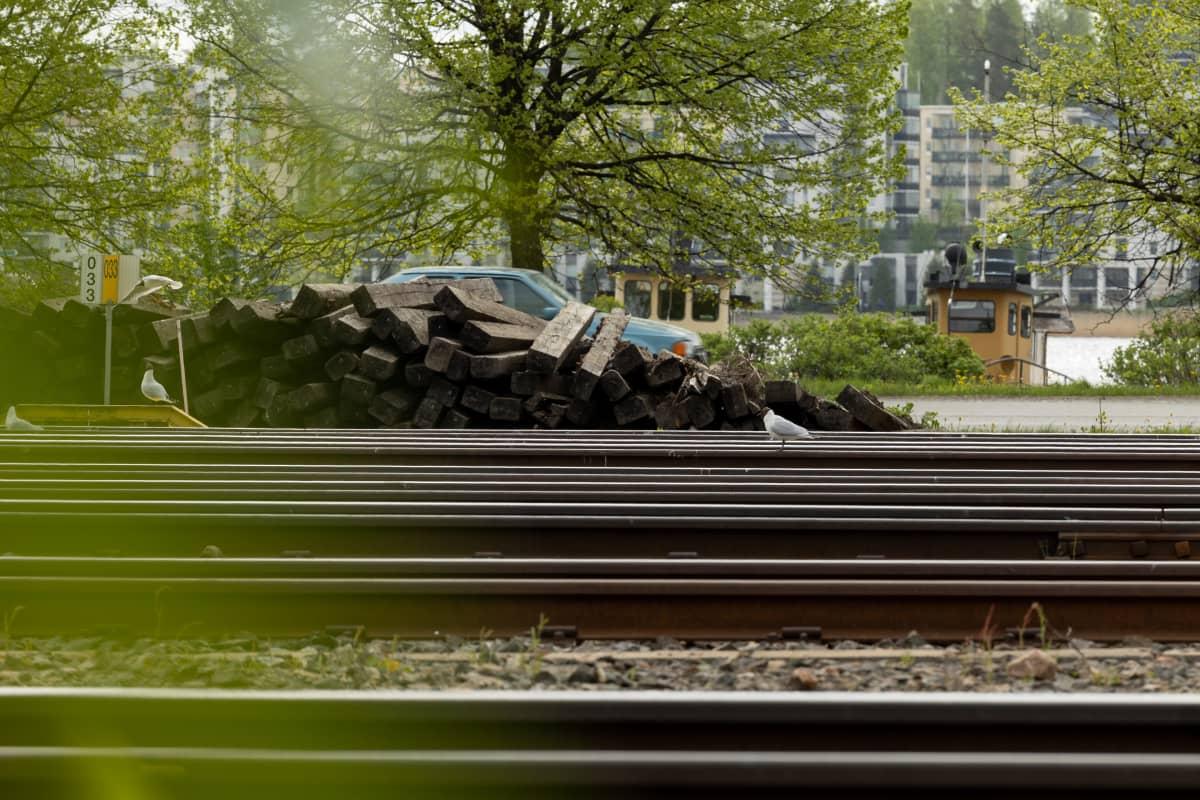Lokit ovat asuttaneet Jyväskylän ratapihan.