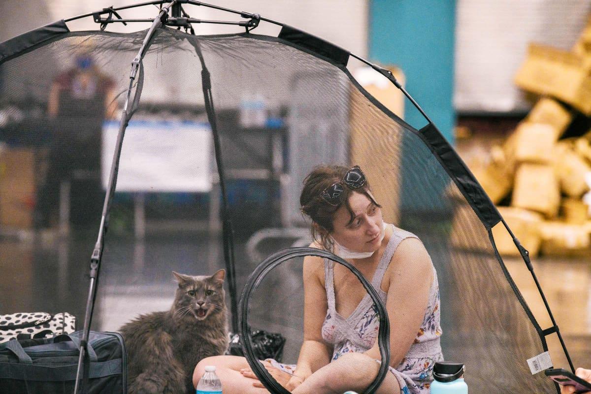 Nainen ja kissa istuvat läpinäkyvässä muoviteltassa.